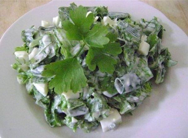 isirgan otu salatasi